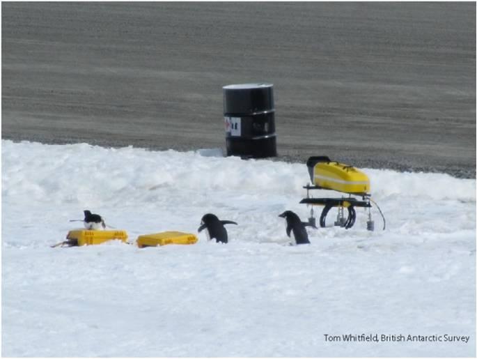 British Antarctic Survey